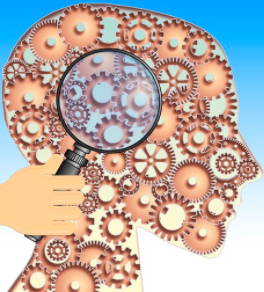 ampliación cerebro
